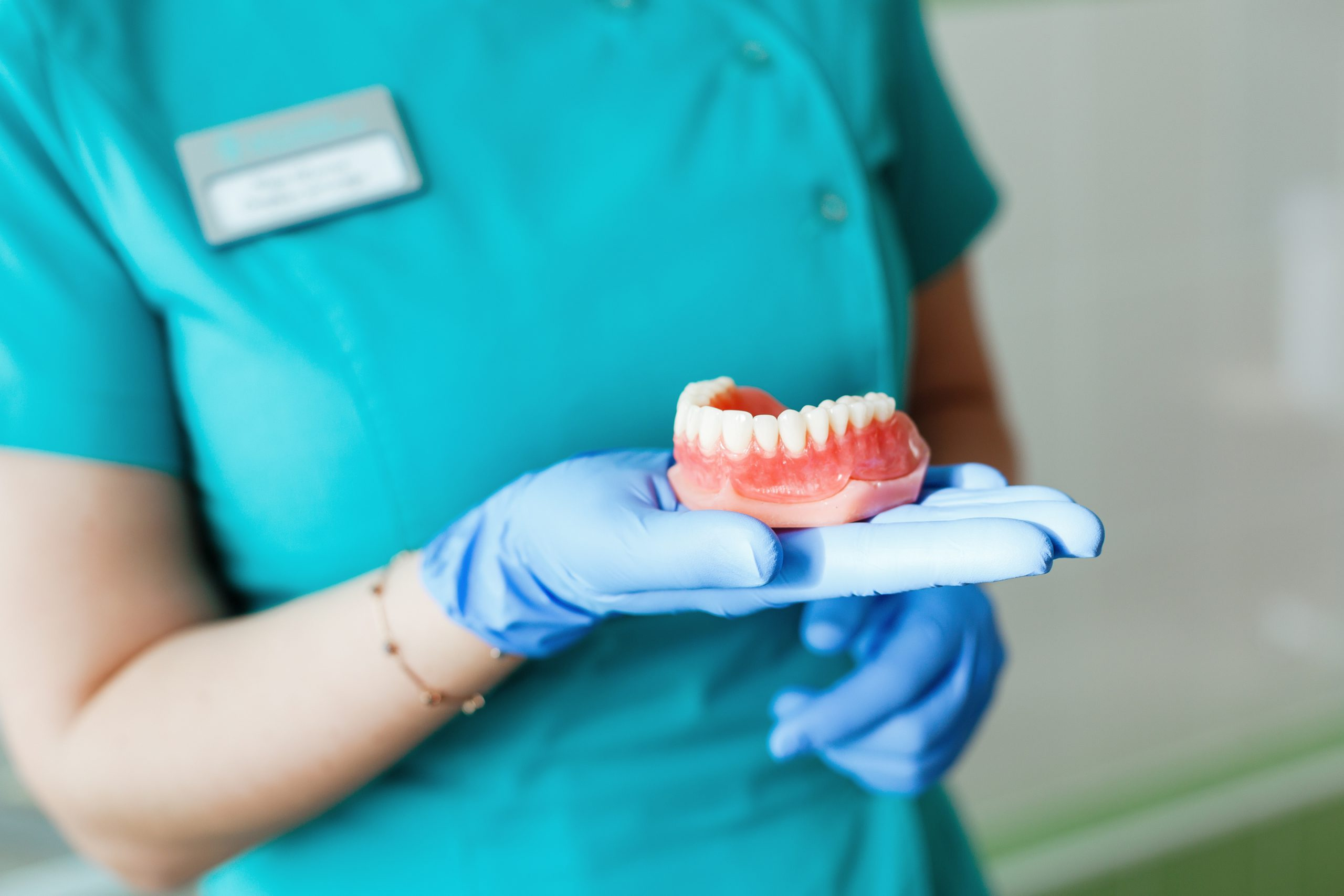 Young female dentist holding a teeth denture